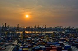 visuel-entreprises-export